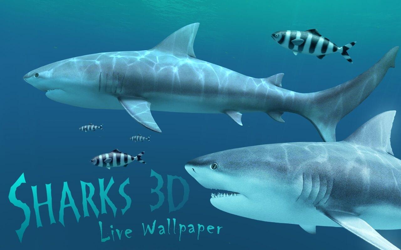 Sharks 3D mac free